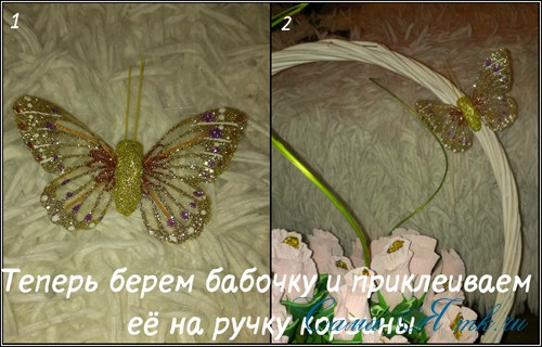 18 (Copy)