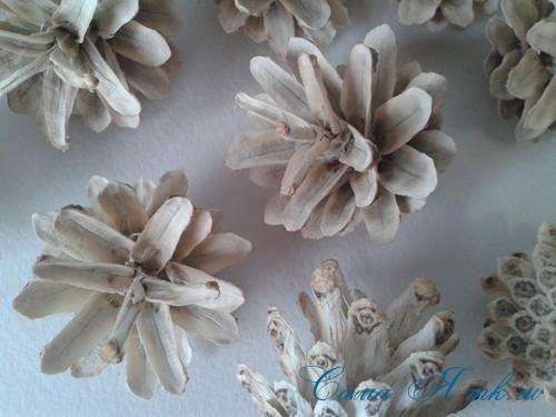 белые шишки для новогоднего декора отбеливаем сосновые шишки белизной 11