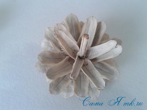 белые шишки для новогоднего декора отбеливаем сосновые шишки белизной 12