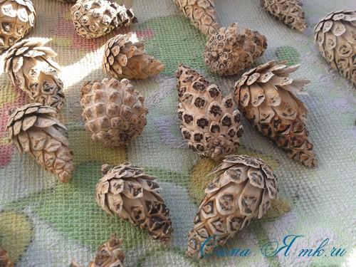 белые шишки для новогоднего декора отбеливаем сосновые шишки белизной 8