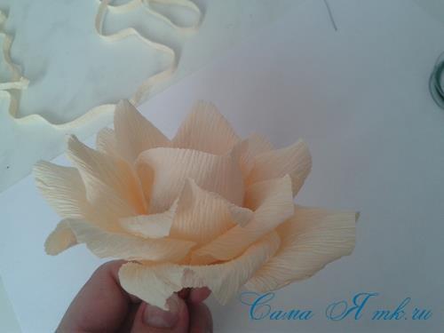 розы из гофро гофрированной бумаги с конфетами свит дизайн своими руками 13